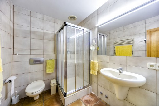 Capacious shower bathroom