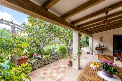 Covered terrace with views to the idyllic garden with lemon trees