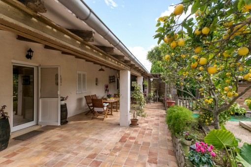 Alternative view of the gorgeous terrace with seating area and garden
