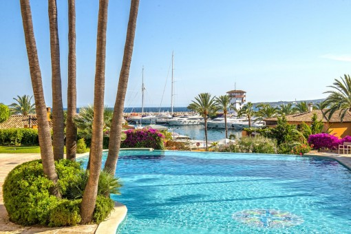 Mediterranen pool area with fantastic views to the harbour of Puerto Portals