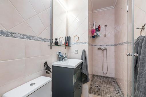 Modern shower-bathroom