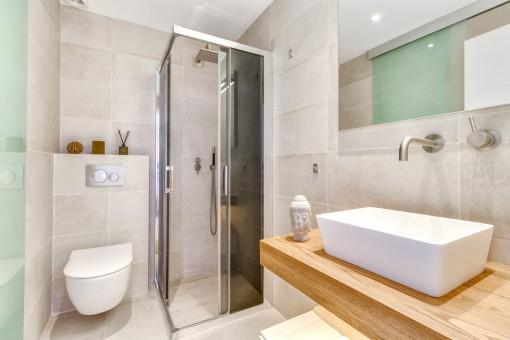 Elegant shower bathroom