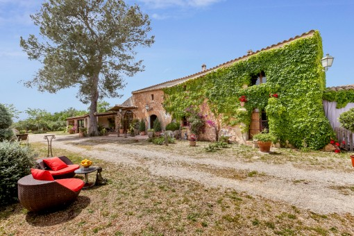18th-century finca with approx. 52.000 sqm of land