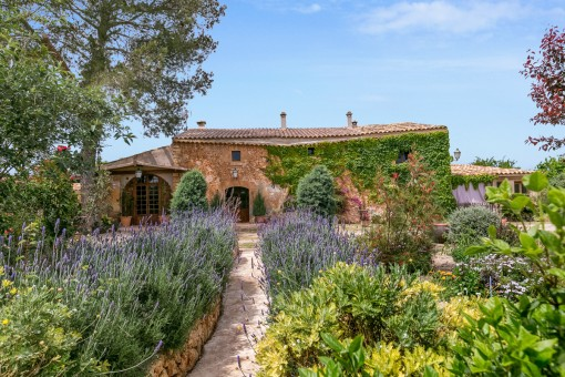 The mallorcan finca is ideal to enjoy the calmness and the surrounding nature