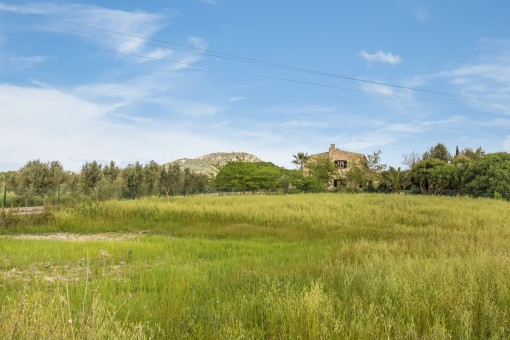 Large plot with lovely natural surroundings