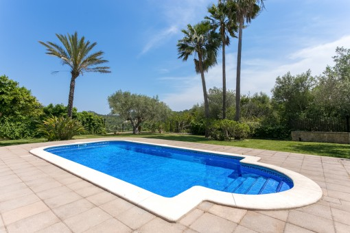 Mediterranean pool area
