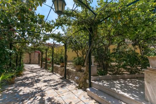 Charming garden area