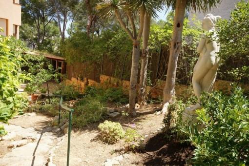 Well-tended garden