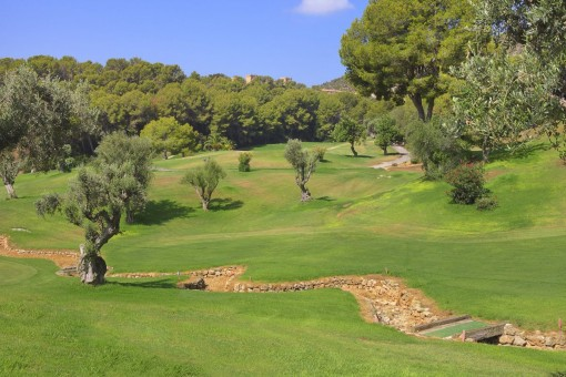 The golf court of Bendinat is very close