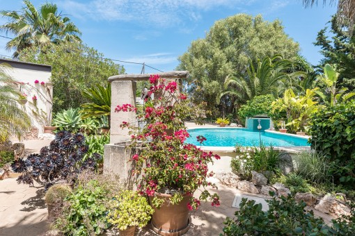 Charming finca with lovely outside area near to Porto Colom