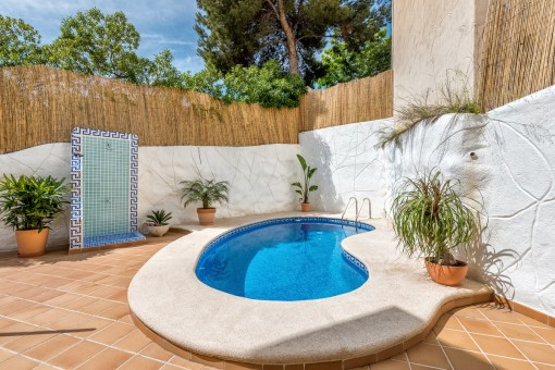 Newly-designed chalet with its own pool in Camp de Mar