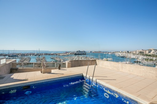 Terrace with pool and spectacular harbour views