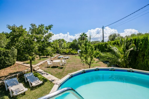 Spacious pool area and garden