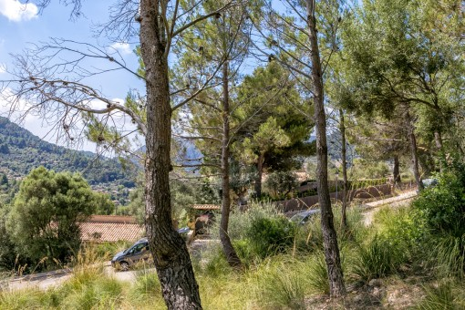 The plot is situated close to the centre of Valldemossa