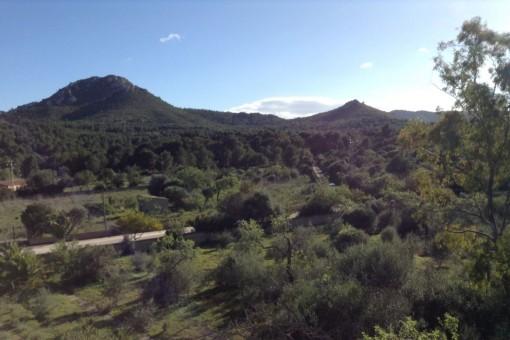 Views over the surrounding landscape