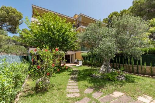 Idyllic and mediterranean garden