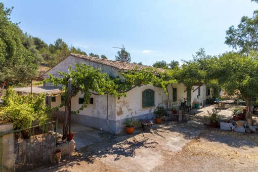 Rustic finca in need of complete renovation with 38 hectares of land in Bunyola