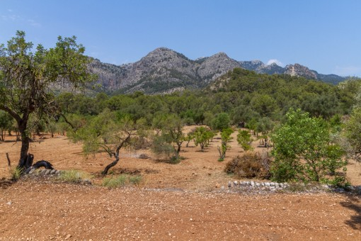 Property with panoramic views