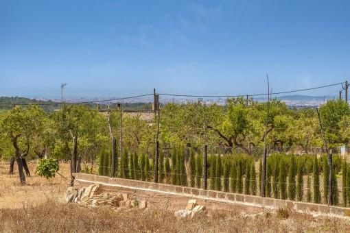 Wonderful panoramic views over the bay of Palma