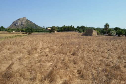 Large plot close to Alcudia