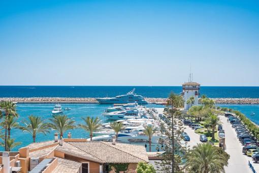 Dreamlike views of the Marina
