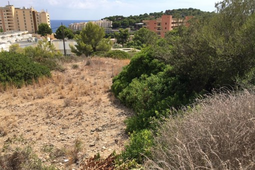 plot in Cala Vinyas