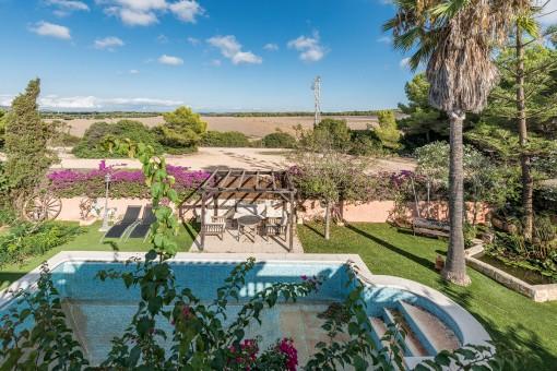 Views to the mediterranean garden