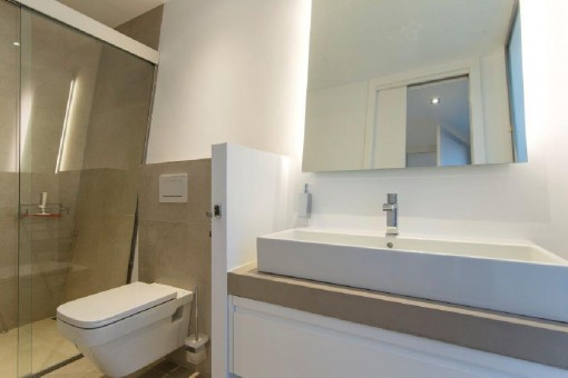 Another modern bathroom with walk-in shower