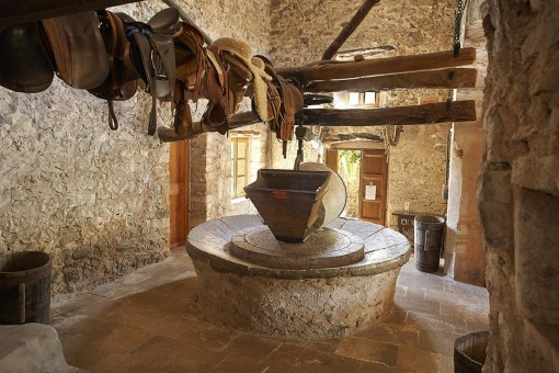 Traditional oil press