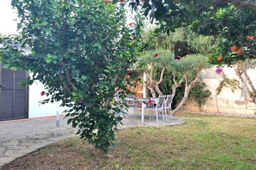 The garden provides several fruit trees