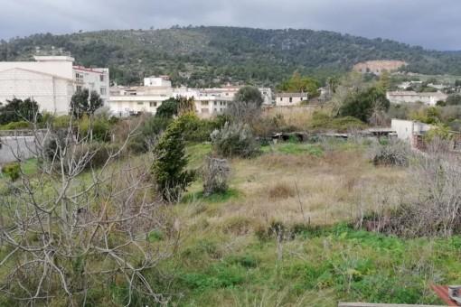 plot in Lloseta for sale