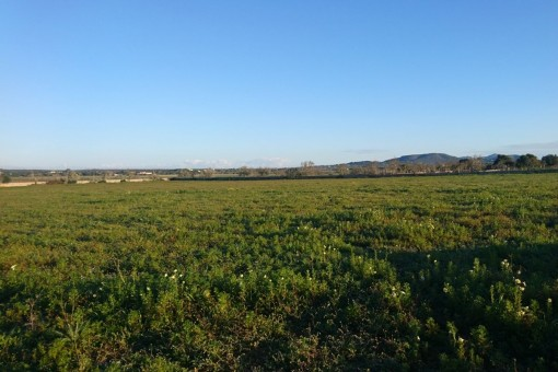 Large building plot with a spectacular construction project near Santanyí
