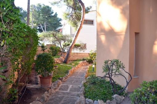 Surroundings and garden