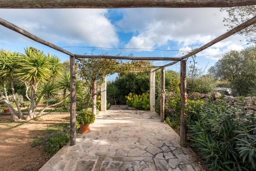 Idyllic garden
