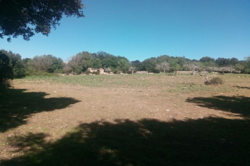 Beautiful building plot in a completely tranquil location near Arta