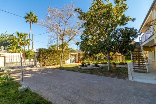 Green garden area