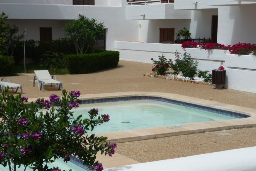 Pool in the communal area