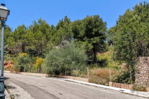 Street view of the plot