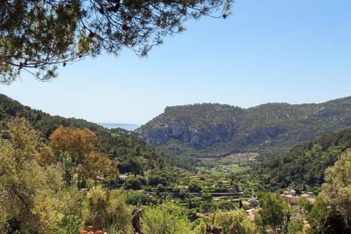 plot in Valldemossa