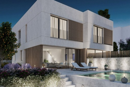 New, elegant designer house with garden, pool and roof terrace in San Agustin