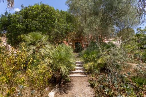 Wonderful, lush garden