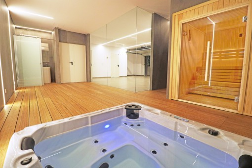 Jacuzzi and sauna in the cellar