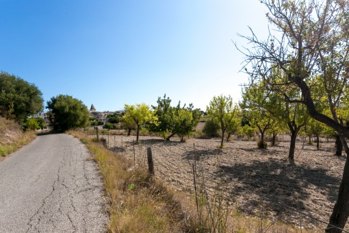 Views to the village Moscari