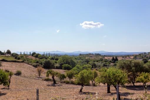 Dreamlike landscape views