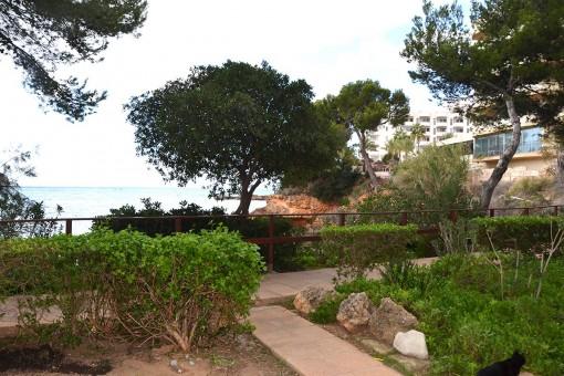 Wonderful apartment with sea views in a complex Santa Ponsa