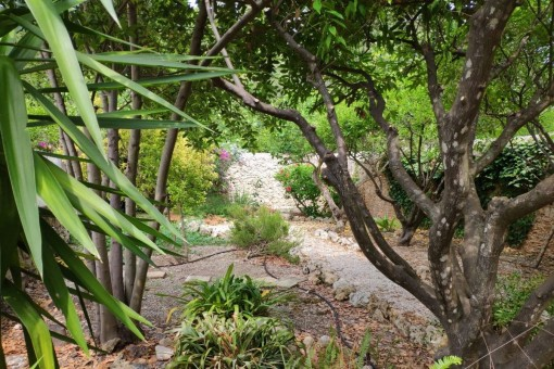 Alternative view of the garden