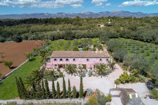 The finca from a bride-eye perspective