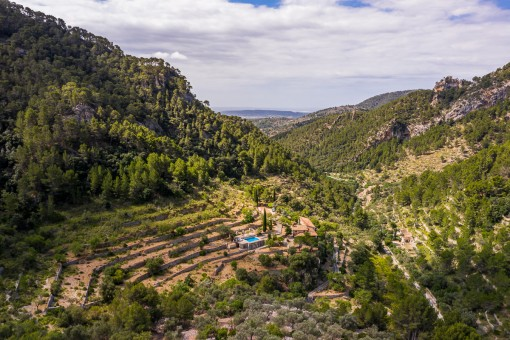 Quietly-situated finca with guest house and its own mountain in Alaro