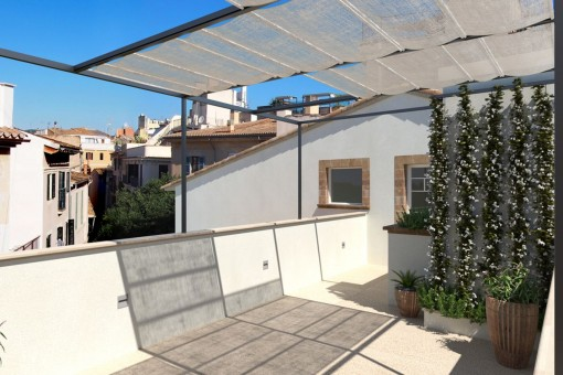 Sunny roof top terrace