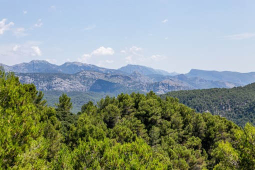 Fantastic view over the Serra de Tramuntana